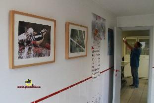 Salle 4_Vété_Plumalia
