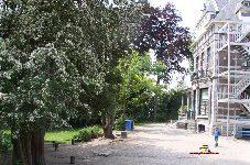 Ecole Uccle 4082_Plumalia