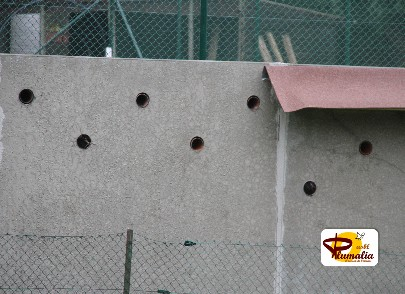 Rosières mur_8528_Plumalia