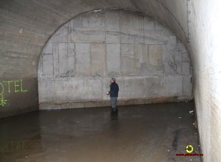 Pont Infrabel 1389_Plumalia