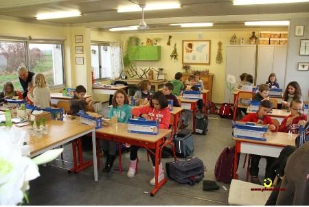 Ecole Ophain 4PA_6965_Plumalia