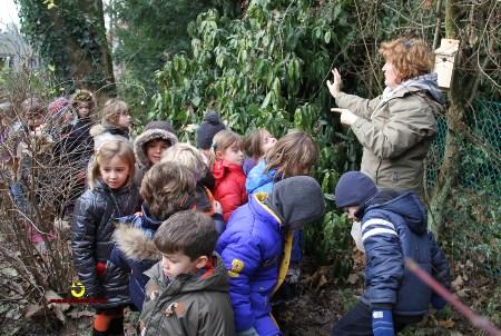 Ecole Uccle 3Gj_7000_Plumalia
