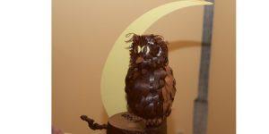 Oiseaux chocolat 1 Plumalia